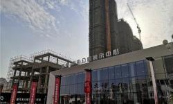 大悟海纳中央公园三期四月工程进度:所有楼栋已经封顶,屋顶电梯机房及屋面花架结构完成!