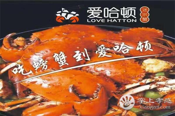 爱哈顿迷宗蟹