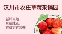 汉川市农庄草莓采摘园