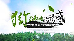 大悟县大胜村猕猴桃基地