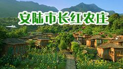 安陆市长红农庄