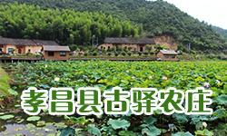 孝昌县古驿农庄