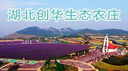 湖北创华生态农庄