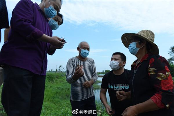 孝昌县发展养殖业助村民增收