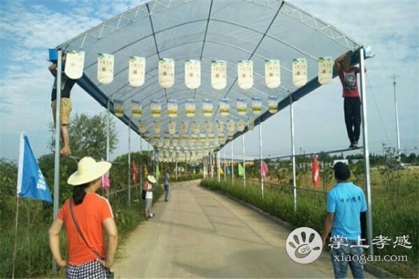 湖北穗景生态农业园好玩吗?湖北穗景生态农业园游玩攻略介绍[图2]