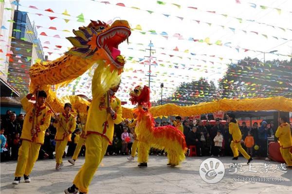 安陆民俗文化节火热来袭!麒麟狮子舞、大唐竹马、采莲船、皮影戏等民俗文化节目轮番上演[图1]