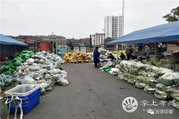 云梦城区每天给居民配送蔬菜10多个品种24万斤[图1]