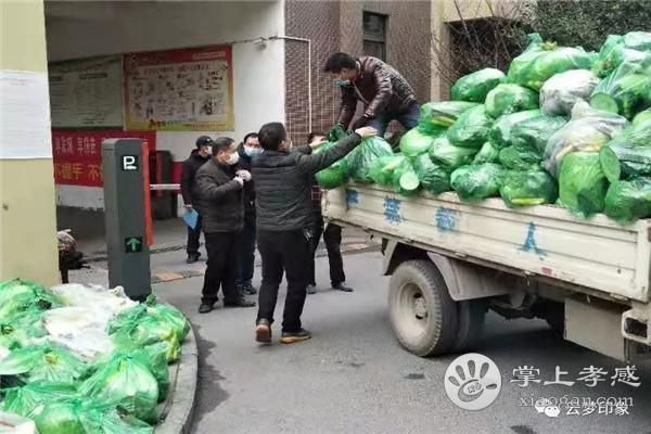云梦城区每天给居民配送蔬菜10多个品种24万斤[图5]