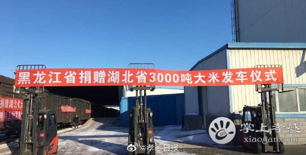 黑龙江省支援孝感市3000吨大米[图4]