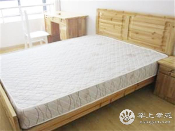 孝感老人房装修选择床垫怎么选?老人房床垫选择技巧介绍[图2]