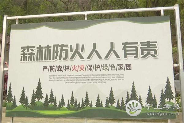 汉川市委书记李先乔调研督导消防和森林防(灭)火工作[图1]