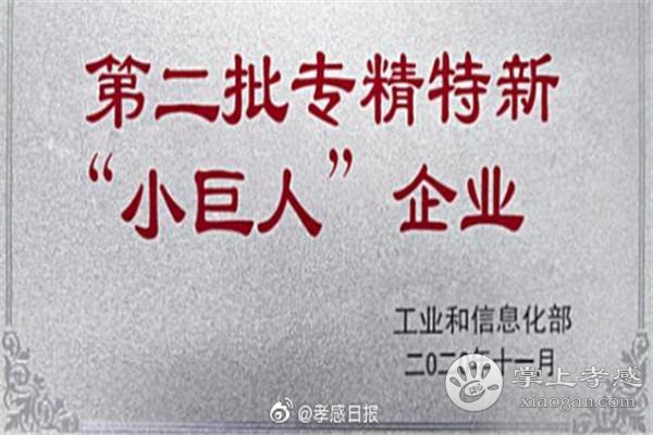 """孝感3企业入选全国第二批专精特新""""小巨人""""![图1]"""